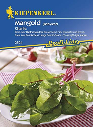 Mangold Charlie