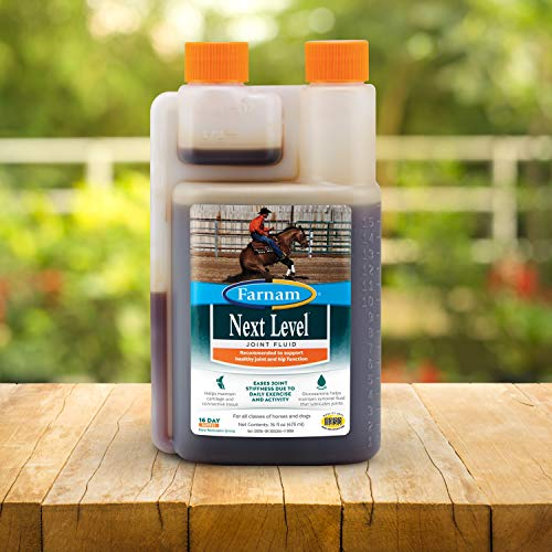 Top 10 best selling list for next level joint supplement for dogs