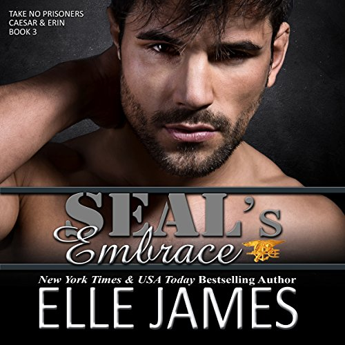 SEAL's Embrace audiobook cover art