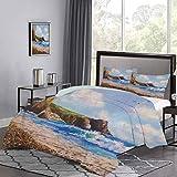 UNOSEKS LANZON - Juego de funda de edredón de pintura de una costa de mar con roca playa y gaviota Nature Art suave funda de cama fácil de limpiar azul marrón blanco y marrón tamaño doble