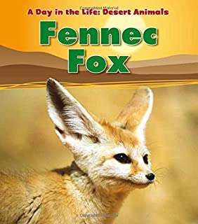Fennec Fox (A Day in the Life: Desert Animals)