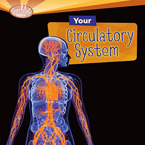 Your Circulatory System cover art
