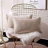 FabThing 2 Pcs Housse de Coussin Rectangulaire en Velours Taie d'oreiller Decorative Super Doux Maison Salon Chambre pour Canapé 30x50cm Crème Blanche