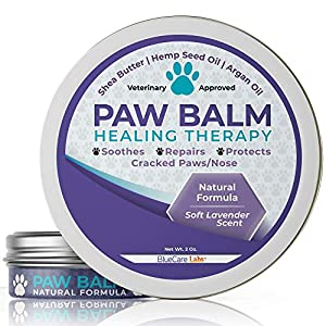 BLUECARE LABS Paw Soother Heals Dry, Cracked Irritated Dog Paw Pads – Organic Natural Ingredients Paw Protection Against Heat & SnowRepairs Damaged Dog Paws – Paw Butter with Soothing Lavender Scent