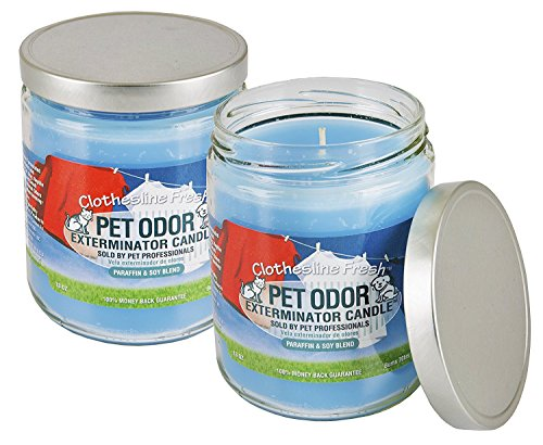 Pet Odor Exterminator Specialty Pet Products Clothesline Fresh 13 Oz Candle, 2-Pack