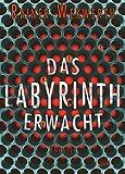Das Labyrinth erwacht: Thriller (Labyrinth-Trilogie 1)