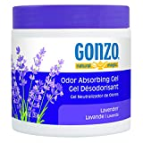Gonzo Odor Absorbing Gel - Odor Eliminator for Car RV Closet Bathroom Pet Area Attic & More - Captures and Absorbs Smoke Mold and Other Odors - 14 Ounce, Lavender