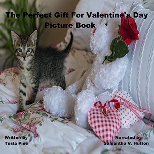 The Perfect Gift For Valentine's Day Picture Book audiobook cover art
