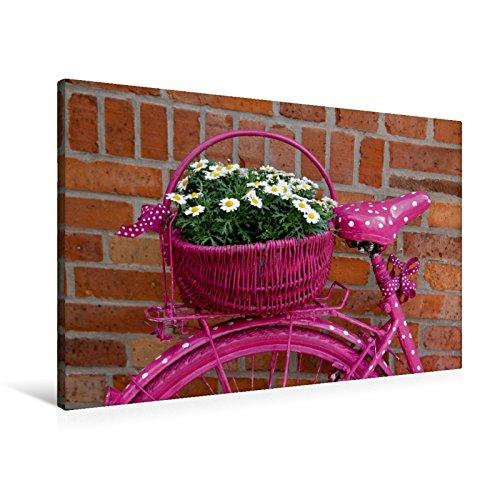Premium Textil-Leinwand 90 x 60 cm Quer-Format Pink   Wandbild, HD-Bild auf Keilrahmen, Fertigbild auf hochwertigem Vlies, Leinwanddruck von SchnelleWelten