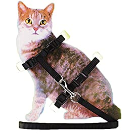 Brussels08 Adjustable Nylon Cat Harness with Leash Puppy Pet Harness Strap Collar Lead Leash Traction Safety Rope