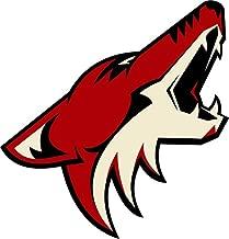 skyhighprint - Phoenix Coyotes NHL Hockey Sport Decor Vinyl Print Sticker 12'' X 12''
