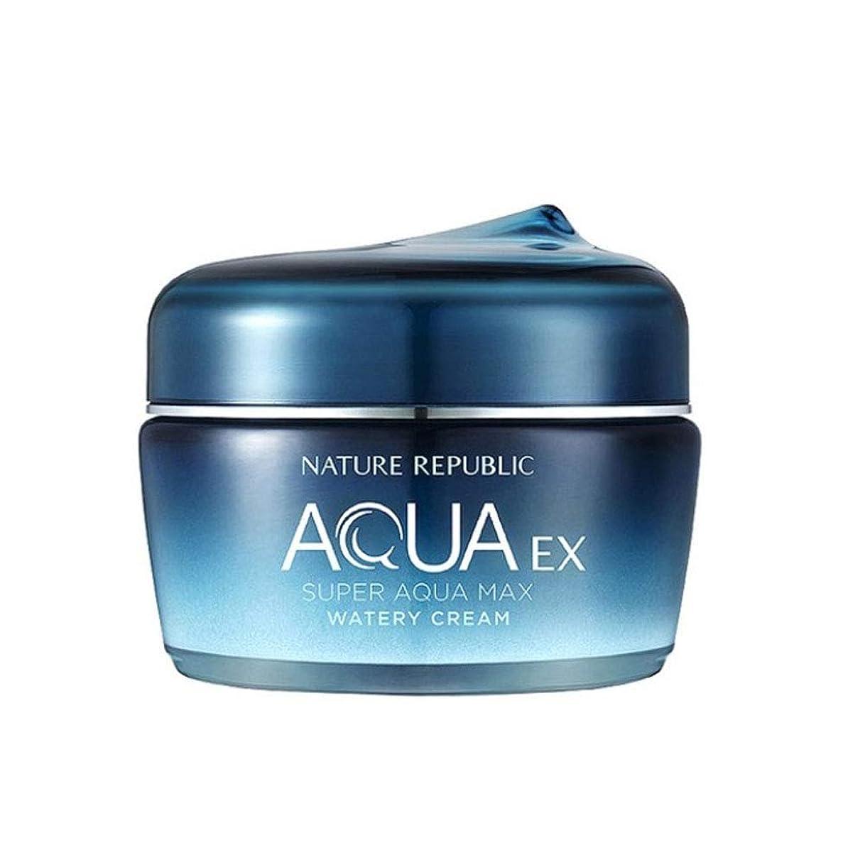 破裂畝間塗抹ネイチャーリパブリックスーパーアクアマックスEX水分クリーム80ml韓国コスメ、Nature Republic Super Aqua Max EX Watery Cream 80ml Korean Cosmetics [並行輸入品]