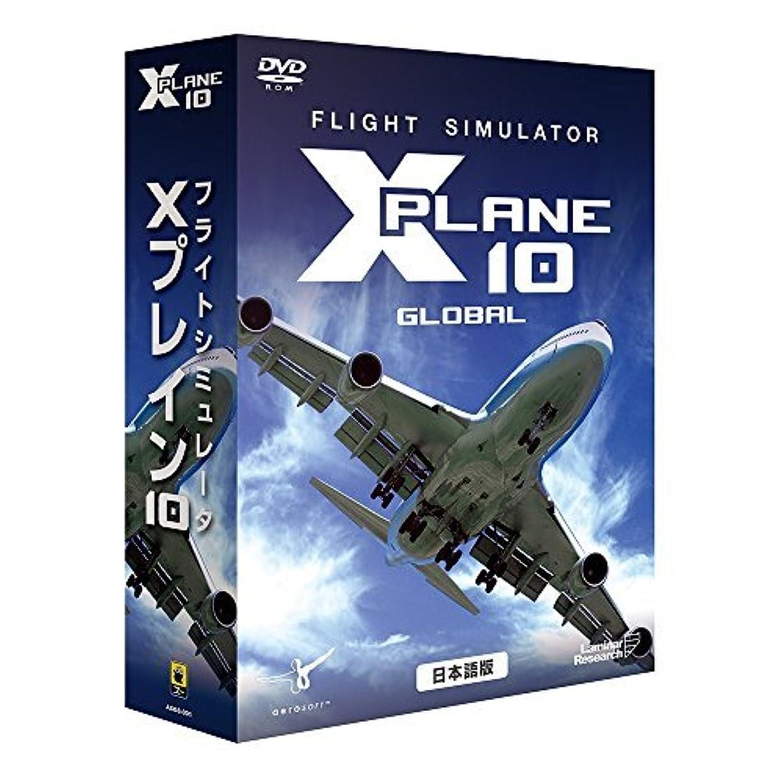 膨張する不規則な泥棒ズー フライトシミュレータ Xプレイン10 日本語 価格改定版