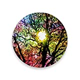 Montoj - Posavasos con diseño de árbol abstracto para bebidas, madera, 1, 1 piece set