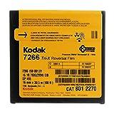 Kodak Tri-X 7266, 16 mm, Schwarz / Weiß, 33 m