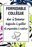 Formidable Collègue: Carnet de Note, idée cadeau...