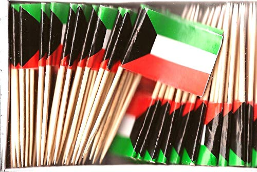 Kuwait Mini Country Toothpick Flags, 100 Small International Mini Flag Cupcake Toothpicks or Cocktail Sticks & Picks (Kuwait, 1 Box of 100-100 Total Toothpicks)