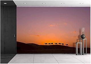 Amazon com: Caravan - Paint, Wall Treatments & Supplies