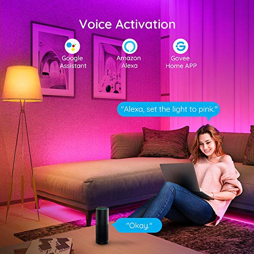 Govee 65.6 Feet Led Strip Lights Work with Alexa and Google Assistant RGB for Bedroom Kitchen 8