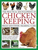 Chicken Breeds Review and Comparison
