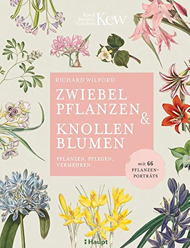 Zwiebelpflanzen & Knollenblumen: pflanzen, pflegen, vermehren - mit 66 Pflanzenporträts