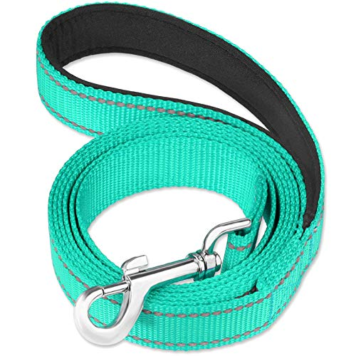 FunTags 6FT Reflective Dog Leash with Soft Padded Handle for Training,Walking Lead for Medium & Small Dogs,3/4 Inch Wide,Turquoise