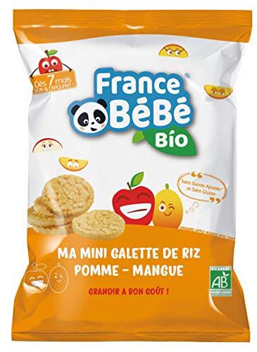 FRANCE BéBé BIO - Biscuits Bio - Mini Galette de Riz - Pomme Mangue -Sans Sucre Ajoutés Sans Gluten - Goûter pour Bébés dès 7 mois 40 g - Lot de 6