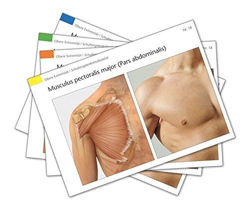 Muskelkarten: Erfassen, Verstehen, Anwenden (Die Muskelbuch-Reihe)