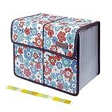 Uquelic Oxford Clasificadores Carpetas de Acordeón 13 Bolsillos Acordeon Documentos...