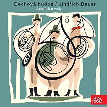 Dechová hudba/Jindřich bauer (5) jetelíček u vody