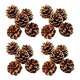 Ashuxxn 48 Pièces Pommes de Pin Naturelles Séchées Pommes de Pin Décoratives à Suspendre Décoration Pomme De Pin De Noël Décoration de Noël à Suspendre pour Décoration de Sapin de Noël (Naturel)