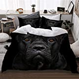 HATESAH Funda De Edredón,Closeup Retrato de la Hermosa Perra Negra Cane Corso,3 Pcs Ropa de Cama Funda Nórdica Sábana Bajera (240 * 260CM)