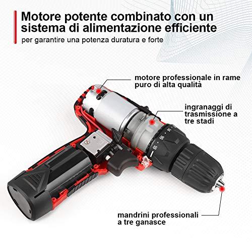 DETLEV PRO Trapano Avvitatore a Batteria 12V da 2000mAh Litio, 2 Velocità 0-300/1200RPM, Max 28N.m, 18 Coppie Regolabili 1 Modalità da Forare, 10 Inserti Cacciavite 8102