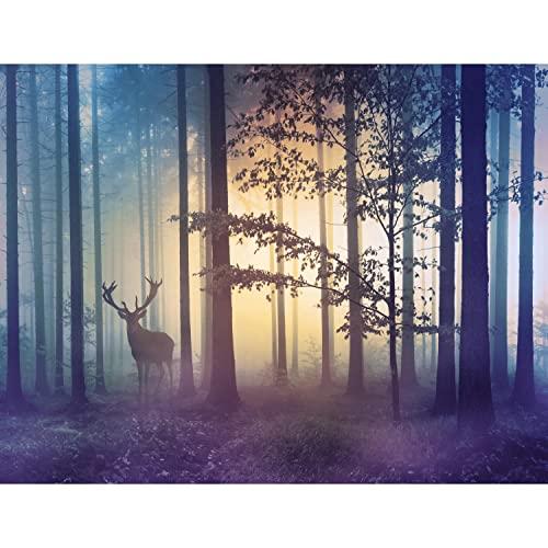 Runa Art GmbH -  Fototapeten Wald