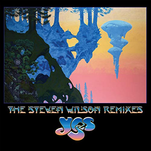 The Steven Wilson Remixes [Vinyl LP]