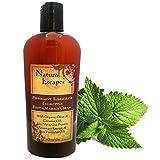 Peppermint, Rosemary & Eucalyptus Massage & Foot Cream | Natural Foot Cream for Dry Feet Repair | All Natural Massage Lotion | Anti-inflammatory Cream | Antifungal Cream | Natural Pain Relief Cream
