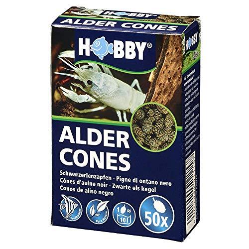 Hobby 51115 Alder Cones