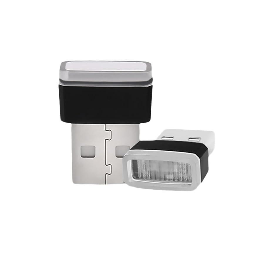 ディスコ奨励政策TAUWELL高品質 USB LED イルミライト 車用 USBイルミカバー ロマンチックな雰囲気作り 夜間ライト プレゼント 1組2個 (青)