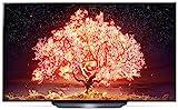 Abbildung LG OLED77B19LA TV 195 cm (77 Zoll) OLED Fernseher (4K Cinema HDR, 120 Hz, Smart TV) [Modelljahr 2021]