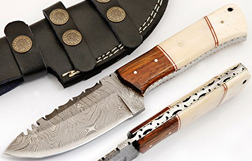 SharpWorld Beautiful Damascus Knife Made of Remarkable Damascus Steel and Exotic Handle -Best Hunting Knife with Sheath TJ102 (Camel Bone & Wood)