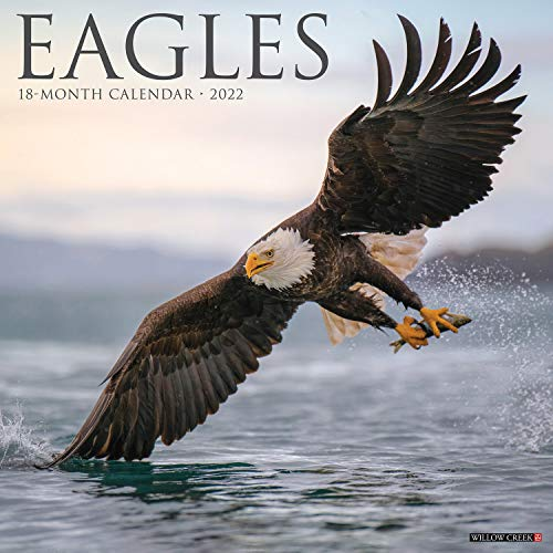 Eagles 2022 Wall Calendar