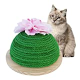 Kratzspielzeug Katzen Kratzbrett Kratzmöbel Katze Selbst Groomer Katzenspielzeug Massage Scratch