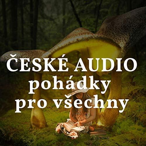 České AUDIO pohádky pro všechny