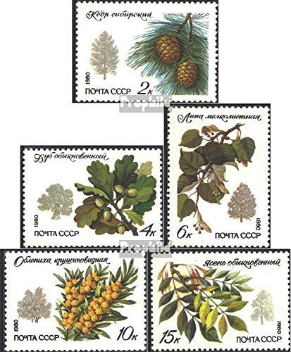Sovjet-Unie Mi.-Aantal.: 5002-5006 (compleet.Kwestie.) 1980 Bomen en Heesters (Postzegels voor verzamelaars) plant