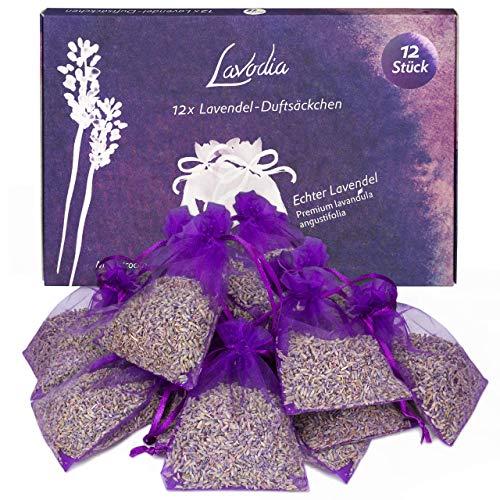 LAVODIA -  12x Lavendel