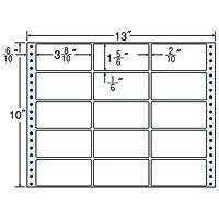 東洋印刷 タックフォームラベル 13インチ ×10インチ 15面付(1ケース500折) M13J