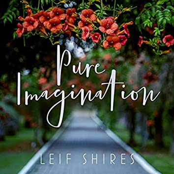 Pure Imagination (feat. Pat Coil, Jacob Jezioro & Danny Gottlieb)