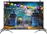 新しいホラーハロウィーンの夜の背景7x5ftファブリックキャッスルゲートスパイダーウェブ写真の背景ハロウィーンパーティーケーキテーブルの装飾バナー写真ブース背景小道具洗える