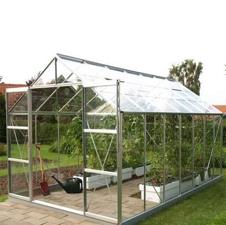 Serre en verre trempé Uranus - 11.45 m², Couleur Aluminium naturel