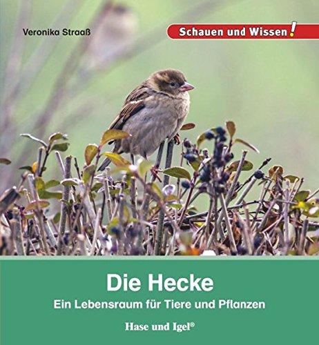 Die Hecke: Schauen und Wissen!
